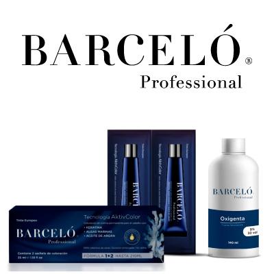 Banner Barceló